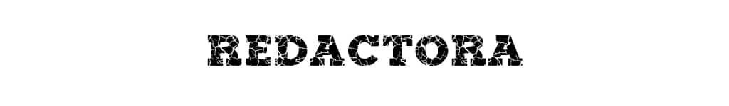 Redactora - Equipo