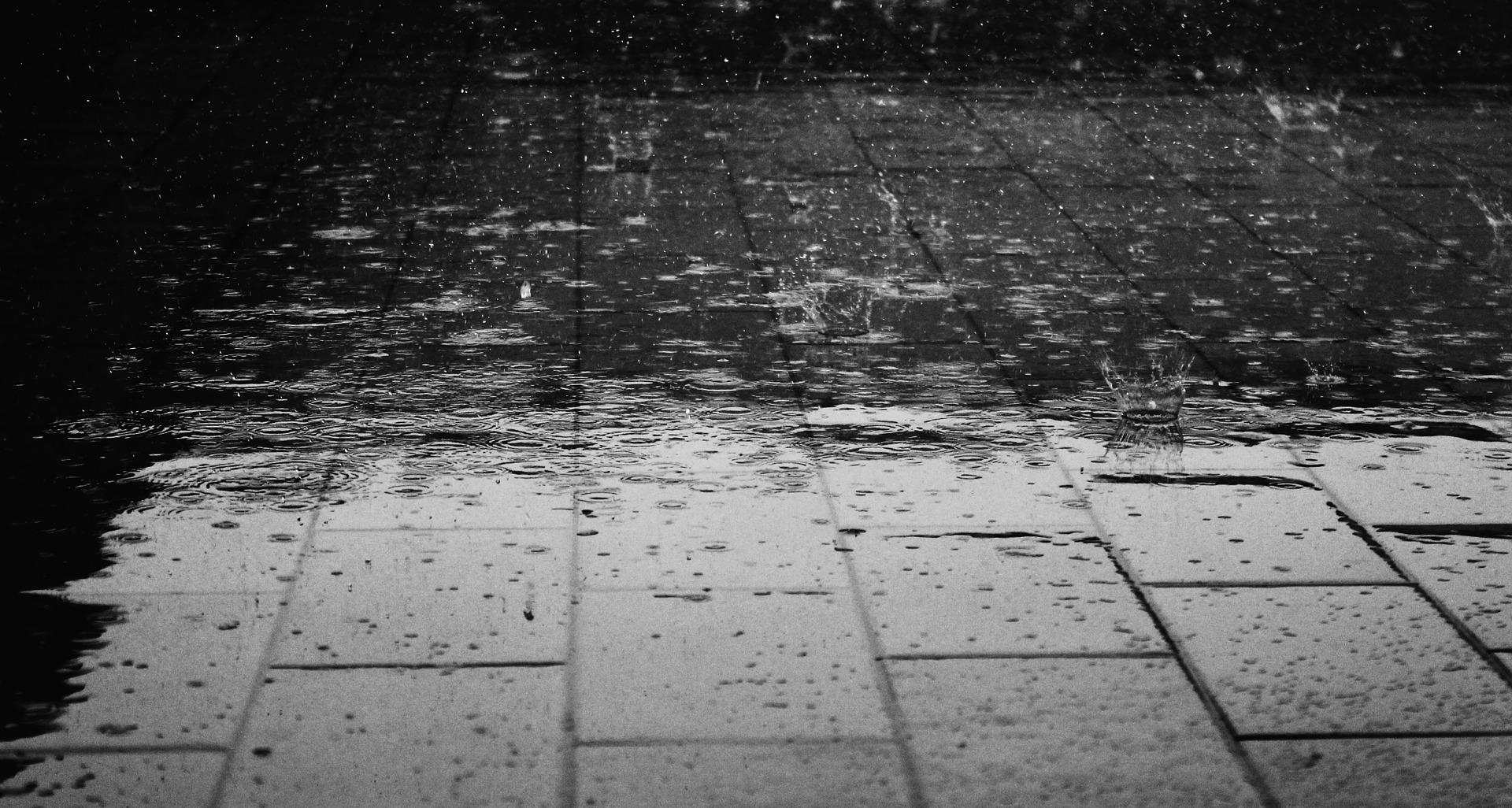 rain 122691 1920 - Cómo denunciar el acoso escolar